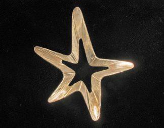 Beau Sterling Star Pin